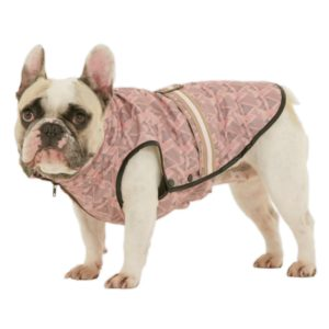 french bulldog jacket windsor jacket for french bulldog dogissimo 1624